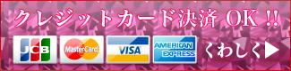クレジットカード決済OK!!詳しくはこちら